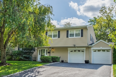 New Providence Boro Single Family Home For Sale: 113 Evergreen