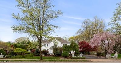 Denville Twp. Single Family Home For Sale: 9 N Ridge Rd