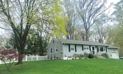 Parsippany-Troy Hills Twp. Single Family Home For Sale: 43 Ferncliff Rd