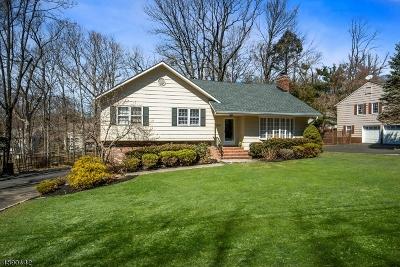 Scotch Plains Twp. Single Family Home For Sale: 2691 Deer Path