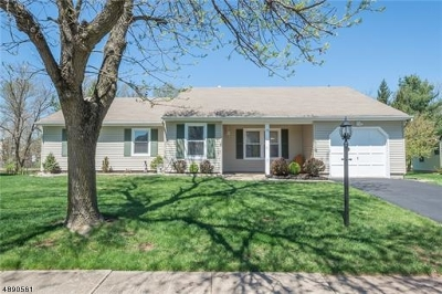 Edison Twp. Single Family Home For Sale: 33 Stonewall Dr