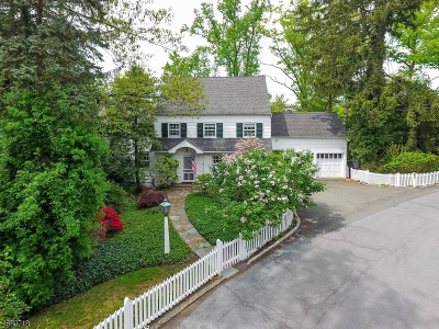 Summit City Single Family Home For Sale: 9 Crest Acre Court