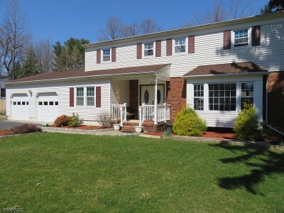 East Brunswick Twp. Single Family Home For Sale: 113 Dunhams Corner Rd