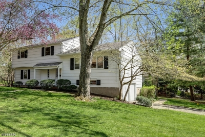 Livingston Twp. Single Family Home For Sale: 235 Hillside Ave