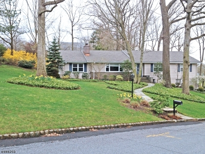 Chatham Twp. Single Family Home For Sale: 1 Willow Way