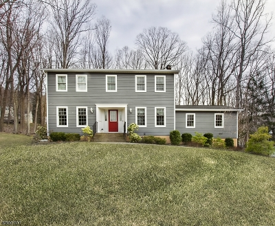 Randolph Twp. Single Family Home For Sale: 6 Drum Hill Ln