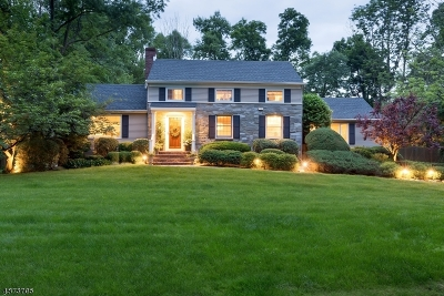New Providence Boro Single Family Home For Sale: 45 Pine Ct