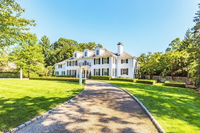 Essex County, Morris County, Union County Single Family Home For Sale: 180 Highland Avenue