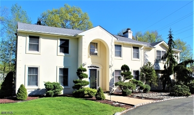 Scotch Plains Twp. Single Family Home For Sale: 4 Stoneleigh Dr