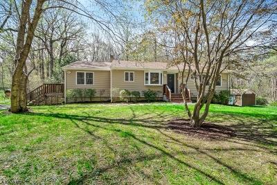 Randolph Twp. Single Family Home For Sale: 23 Zander Ln