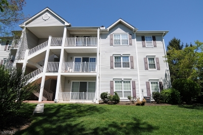 North Brunswick Twp. Condo/Townhouse For Sale: 493 Witney Ct #493