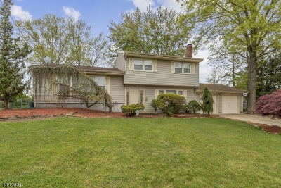 East Brunswick Twp. Single Family Home For Sale: 8 Bruning Rd