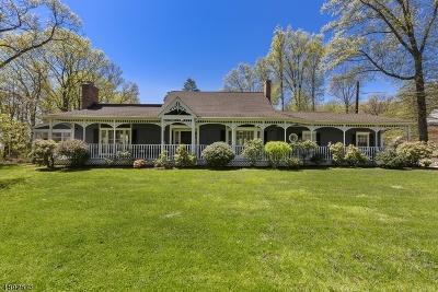 Mountainside Boro Single Family Home For Sale: 405 Ackerman Ave