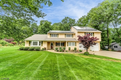 Hanover Twp. Single Family Home For Sale: 149 Reynolds Ave