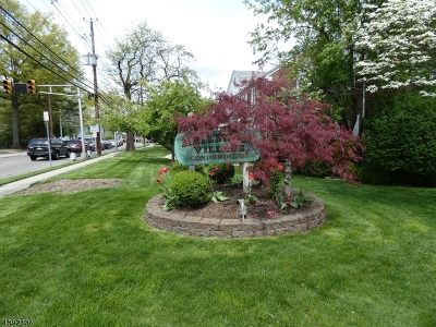 Maplewood Twp. Condo/Townhouse For Sale: 51-A Meadowbrook Pl