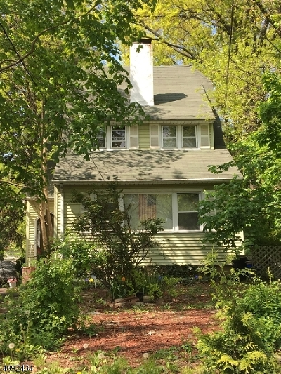 Roselle Boro Single Family Home For Sale: 149 E 6th Ave