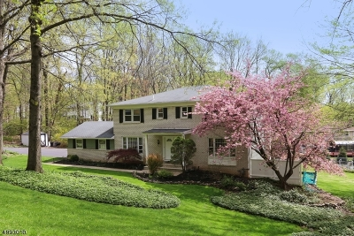 Parsippany-Troy Hills Twp. Single Family Home For Sale: 4 Southwood Dr