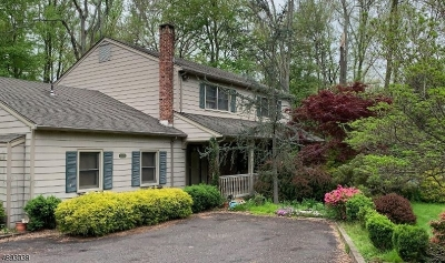 Scotch Plains Twp. Single Family Home For Sale: 1395 Raritan Rd