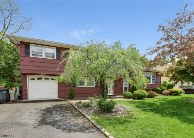 Springfield Single Family Home For Sale: 29 Hemlock Ter