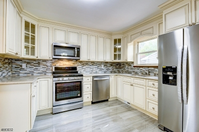 Parsippany-Troy Hills Twp. Single Family Home For Sale: 45 Summit Rd