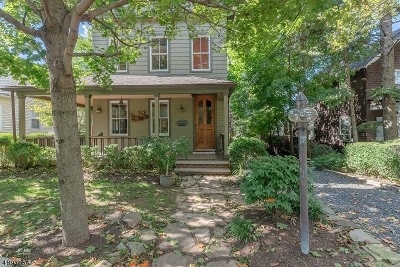 Summit City Single Family Home For Sale: 226 Morris Ave