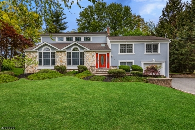 Florham Park Boro Single Family Home For Sale: 10 Northern Ave