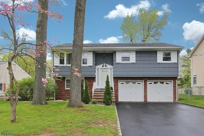 Cranford Twp. Single Family Home For Sale: 546 Lexington Ave