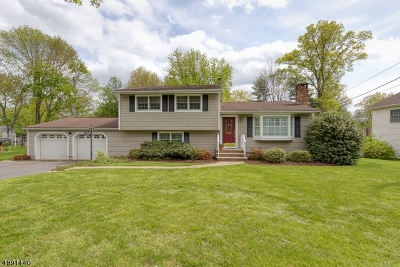 Florham Park Boro Single Family Home For Sale: 16 Pinch Brook Dr