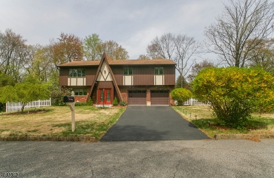 Randolph Twp. Single Family Home For Sale: 8 Rose Way