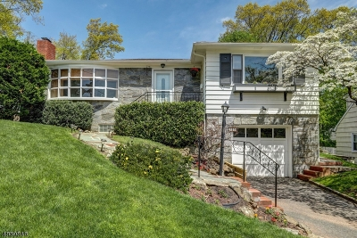 West Orange Twp. Single Family Home For Sale: 20 Harriet St