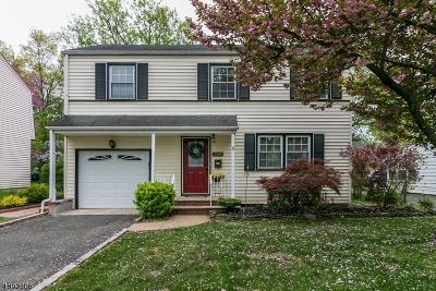 Scotch Plains Twp. Single Family Home For Sale: 2080 Mountain Avenue