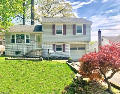 Scotch Plains Twp. Single Family Home For Sale: 177 Watchung Terrace