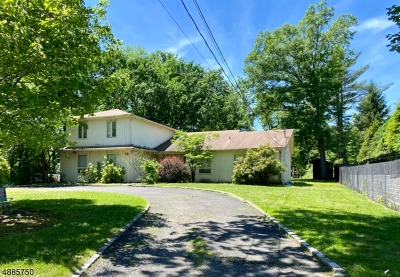 Livingston Twp. Single Family Home For Sale: 10 Wilshire Dr