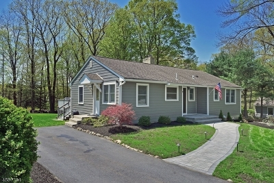 Randolph Twp. Single Family Home For Sale: 10 Crestwood Dr