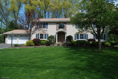Berkeley Heights Twp. Single Family Home For Sale: 22 Holly Glen Ln