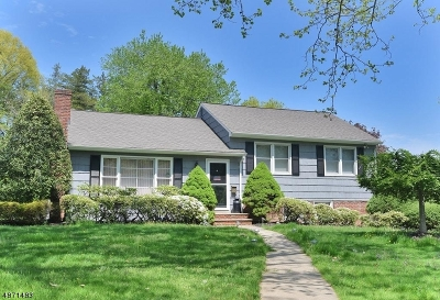 Florham Park Boro Single Family Home For Sale: 2 Townsend Dr