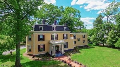 Plainfield City Single Family Home For Sale: 950 Hillside Avenue