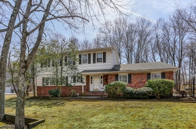 Hanover Twp. Single Family Home For Sale: 146 Bee Meadow Pky