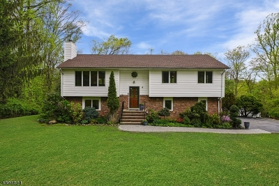 Denville Twp. Single Family Home For Sale: 8 Cramsey Pl