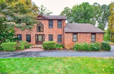Randolph Twp. Single Family Home For Sale: 23 Sparrow Rd