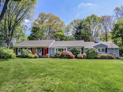 Florham Park Boro Single Family Home For Sale: 25 Village Rd