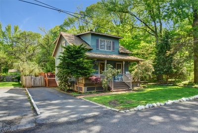 Scotch Plains Twp. Single Family Home For Sale: 1007 Locust Ave