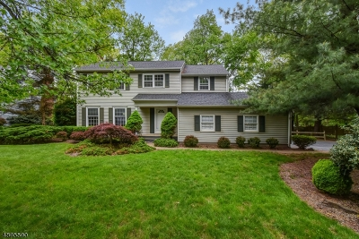 Florham Park Boro Single Family Home For Sale: 55 Sherbrooke Drive