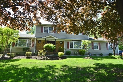 East Hanover Twp. Single Family Home For Sale: 144 River Rd