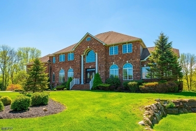 Denville Twp. Single Family Home For Sale: 8 Brodziak