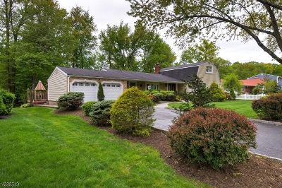 Parsippany-Troy Hills Twp. Single Family Home For Sale: 11 Bromley Dr