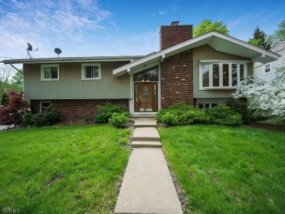 Parsippany-Troy Hills Twp. Single Family Home For Sale: 5 Rickland Rd