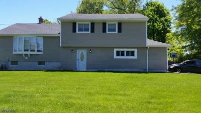 Roxbury Twp. Single Family Home For Sale: 137 S Hillside Ave