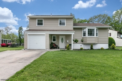 Edison Twp. Single Family Home For Sale: 52 Ferris Rd
