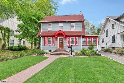 Plainfield City Single Family Home For Sale: 1307-09 Putnam Ave